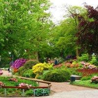 Парк цветов :: Nina Yudicheva