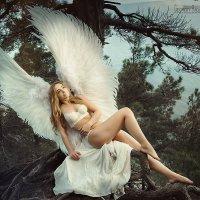 Ангел :: Георгий Греков