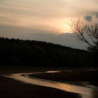 Закаты на Сухой протоке           Серебро речных дорог :: Алексей (АСкет) Степанов