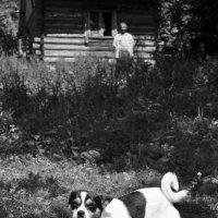 ...собака и её хозяин... :: Ольга Нарышкова