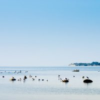 На заливе тишина 2 :: Виталий
