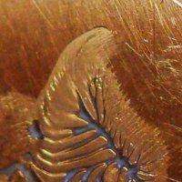 Масляный узор на металлической масленке :: Асылбек Айманов