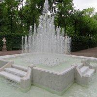 Фонтан в Летнем саду :: татьяна петракова