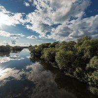 Небо без края. :: Юрий Хома