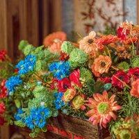 Цветы :: Андрей Володин