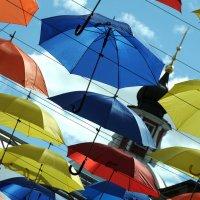 Зонтичные... культуры.. :: tipchik