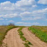 По дороге с облаками :: Ирина Безверхова