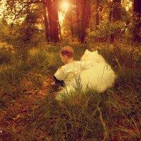 в лесу.... :: Светлана Мизик