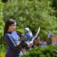Дети и голуби-1 :: cfysx