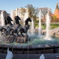 купание коней :: Олег Лукьянов