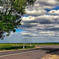 По дороге с облаками :: Ирина Falcone
