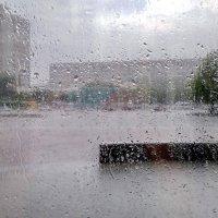Летний ливень за окном :: yuri Zaitsev