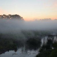 Утренний туман. :: vkosin2012 Косинова Валентина