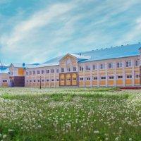Конно-спорт. комплекс в Йошкар-Оле :: Оксана Васильева