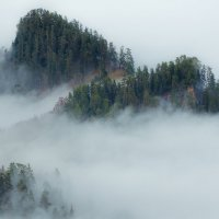 В туманах :: Александр Плеханов