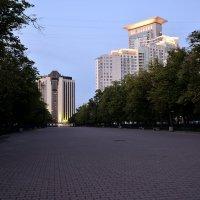 сокольнический великан предрассветные минуты :: Дмитрий Паченков