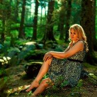В лесу :: Dmitriy Kulamov