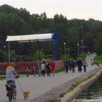 Дама с собачкой :: Андрей Лукьянов