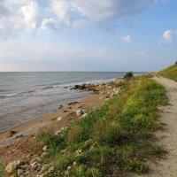 Дорога вдоль моря :: Вера Щукина