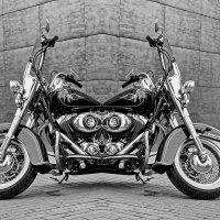 Новая модель Harley-Davidson  Push - pull. :: Анатолий. Chesnavik.