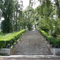 Одно из украшений Павловского парка, которое появилось еще в конце 18 века :: Елена Павлова (Смолова)