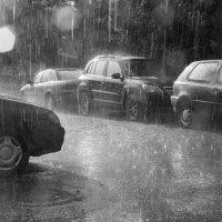 Неожиданный дождь. :: Игорь Ринкевич