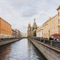 Вид на Спас-на-Крови :: Irina Kurzantseva