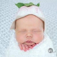 Младенцы :: Люба Забелкина