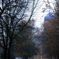 Храм  Петра и  Павла  в тумане.... :: Валерия  Полещикова