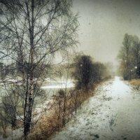 Метель№2 :: Сергей Егоров