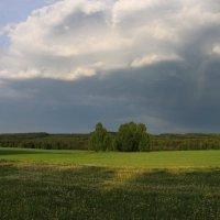 Перед грозой :: Сергей Марков