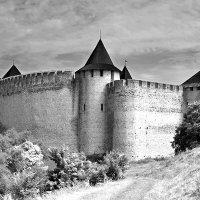 Хотинская крепость. :: Андрий Майковский
