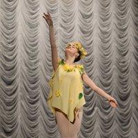 балет :: Алексей Зайцев