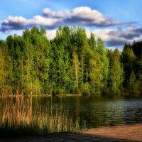 Финское озеро :: Евгения К