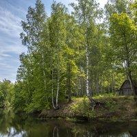 Остров лесной феи :: Иван