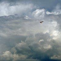 Кстати о птичках... или... Там за облаками... :: Александр Резуненко