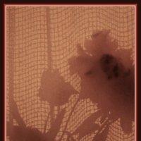 Девушка цветок :: Nikola