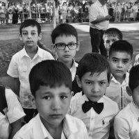 В первый класс :: Леонид Кудрейко
