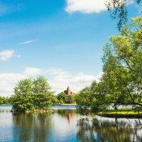 Летний день на озере :: Виталий