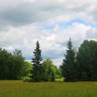 Как же я люблю павловский парк.... :: Tatiana Markova