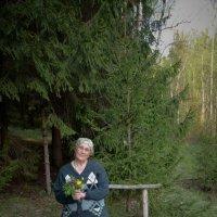 в лесу :: Лариса *