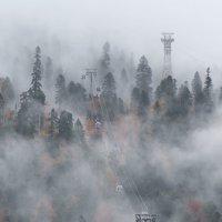 в тумане.. :: Евгений Khripp