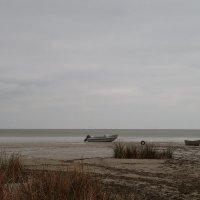 берег моря :: Андрей