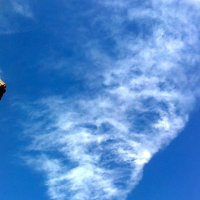 Облако как нарисованное :: Герович Лилия