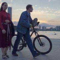 Пришли сумерки...вернулись совы... :: Александр Иванчиков-Немировский