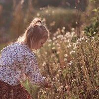 Мое лето. :: Наташа Морозова