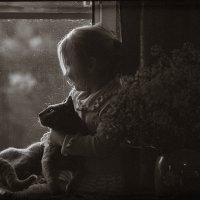 На окошке с кошкой :: Наташа Морозова