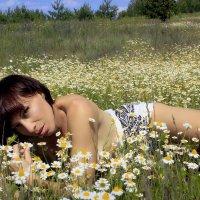 Ромашковый рай.. :: Елена