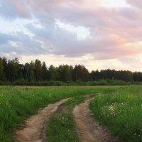 Дороги, дороги :: Павлова Татьяна Павлова