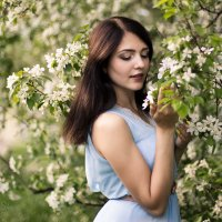 Яблони в цвету :: Аннета /Анна/ Шу